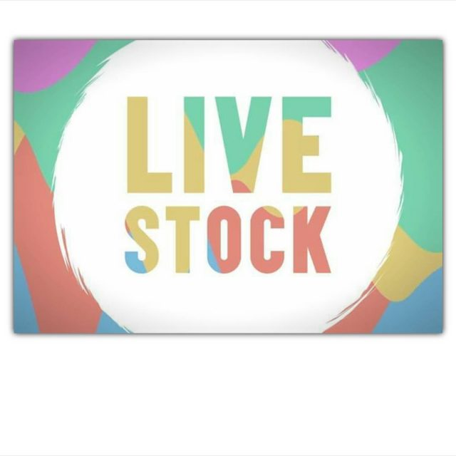 Next up for Miss B is Livestockfestival LS17 on Saturdayhellip